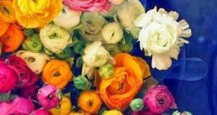 40 Ideas for Fresh Flower Wedding Bouquets
