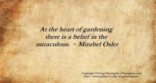 Garden quotes girls 66 Super Ideas