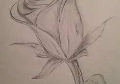 cool flower drawings. visit my youtube channel to learn drawing and coloring