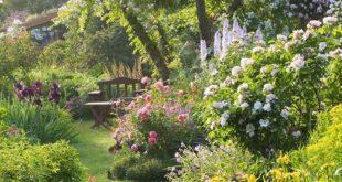 Beste geheime Gärten Ideen 16