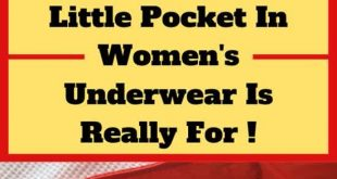 This Is What The Little Pocket In Women's Underwear Is Really For !