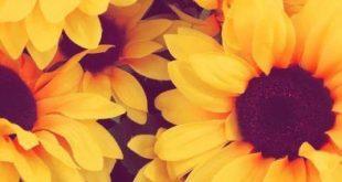 15 Lindos fondos de pantalla estilo Tumblr para personalizar tu celular - #celul...