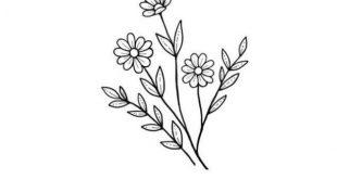 25 schöne Blumen zeichnen Ideen und Inspiration heller Handwerk