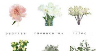 43 Trendy Wedding Bouquets White Peonies Florists