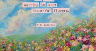 Deep in you wounds are seeds. Waiting to grow beautiful flowers.