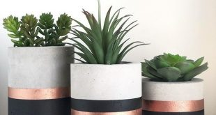 Stylish idea for coloring flower pots