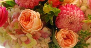 Top 15 Flower Arrangements Collections Ideas